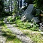 sentiero miléc 16
